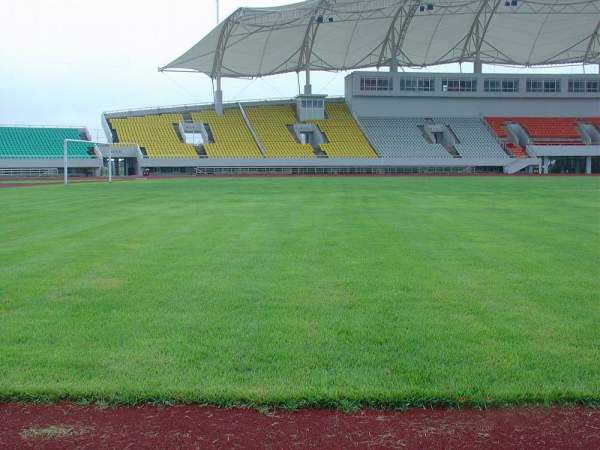 世界杯草坪多少钱一平方 世界杯草坪是真的还是假的