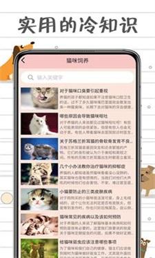 小猫交流器安卓版下载v1.0